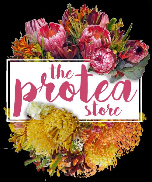 The Protea Store