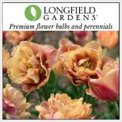 Longfield Gardens